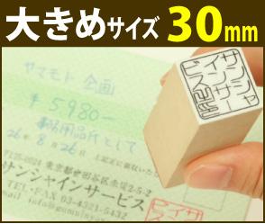画像1: 角印(社印)30mm×30mm (1)